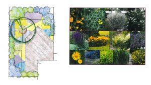 Elisa Tomat Planting Plan